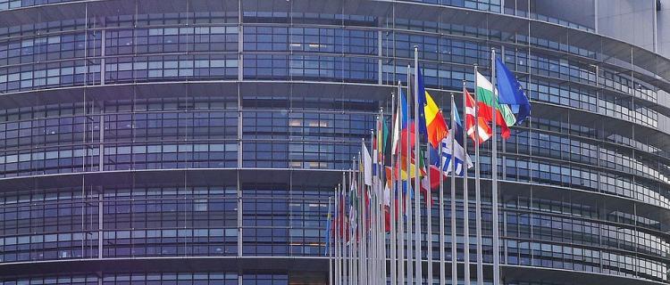Wybory do europarlamentu 2019. Lista kandydatów do PE z Okręgu 4