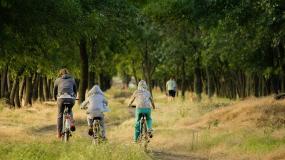 Bezpieczni na rowerze - najważniejsze zasady