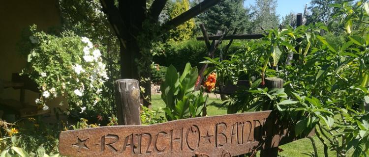 Komisja wybrała najładniejszy ogród w Gminie Serock!